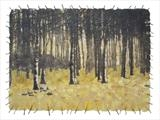 Birch Wood by Janet French, Artist Print