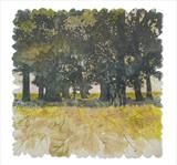 Oak Copse by Janet French, Artist Print