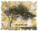 Populus Alba by Janet French, Artist Print