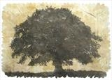 Quercus by Janet French, Artist Print