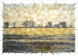 Stubble field by Janet French, Artist Print