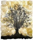 Tilia by Janet French, Artist Print, Etching