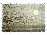 Winter Sun II by Janet French, Artist Print