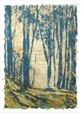 Woodland Study by Janet French, Artist Print